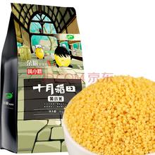 十月稻田 小米 黄小米 红谷小米 五谷杂粮 东北粗粮 大米伴侣 1kg