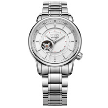 飞亚达(FIYTA)手表 摄影师系列机械男表白盘钢带DGA0052.WWW